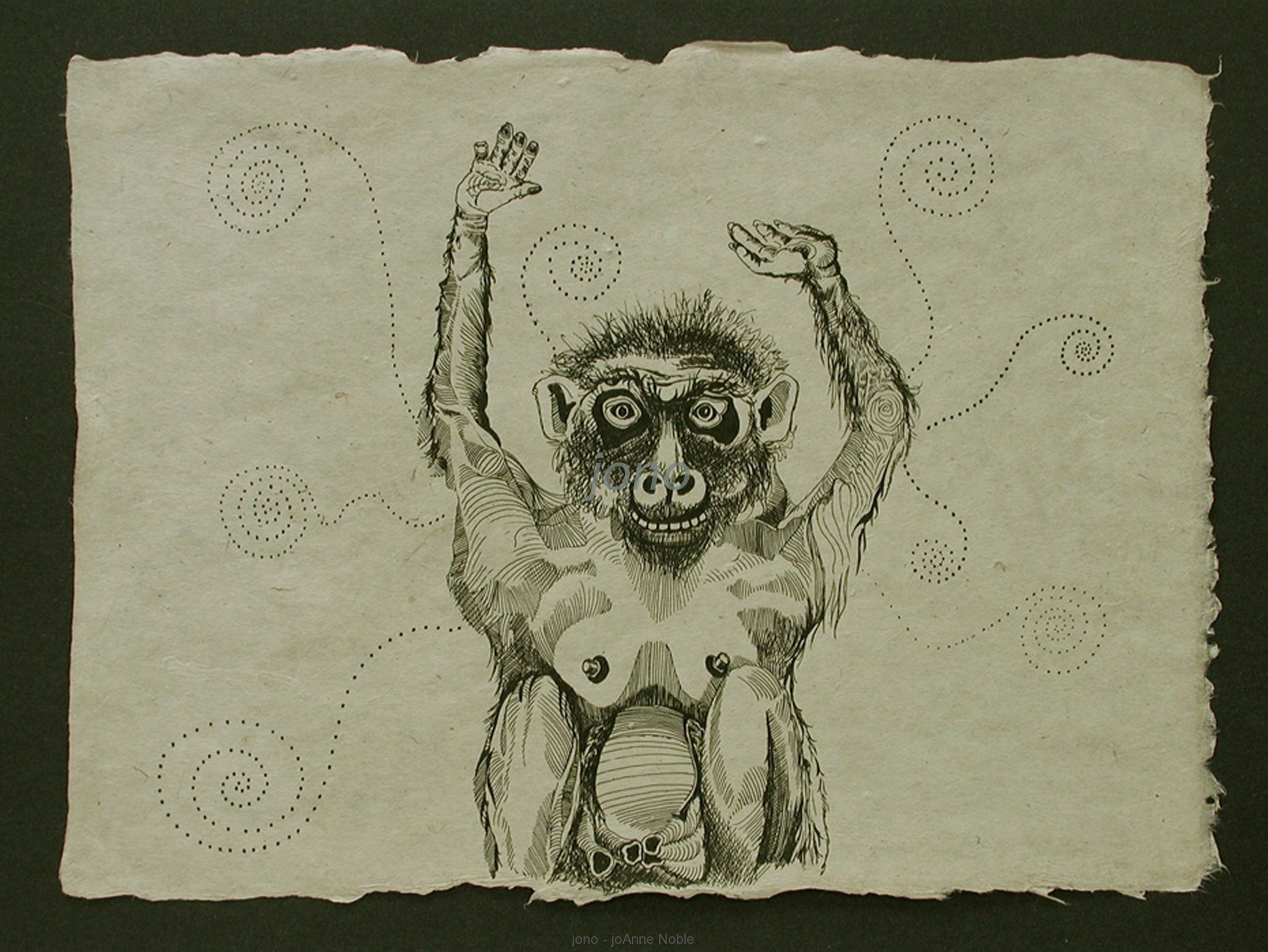 d007-monkey.JPG